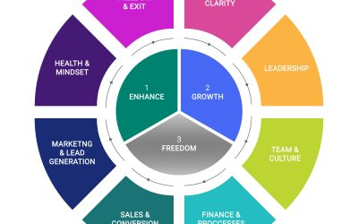 A Path to Increase Business Profits, Growth and Live a Life of Freedom