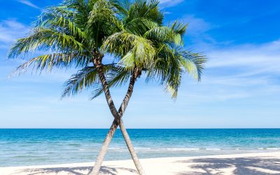 How to Love Your Business and Not Want to Escape to an Island