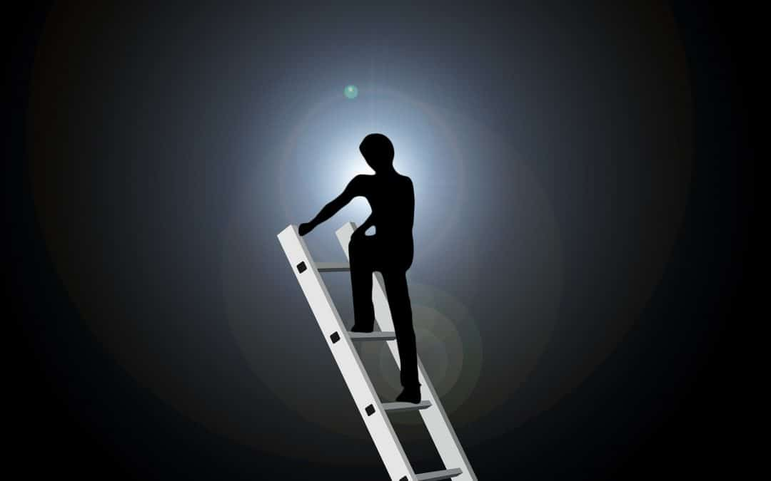 Are you climbing the wrong ladders to success?